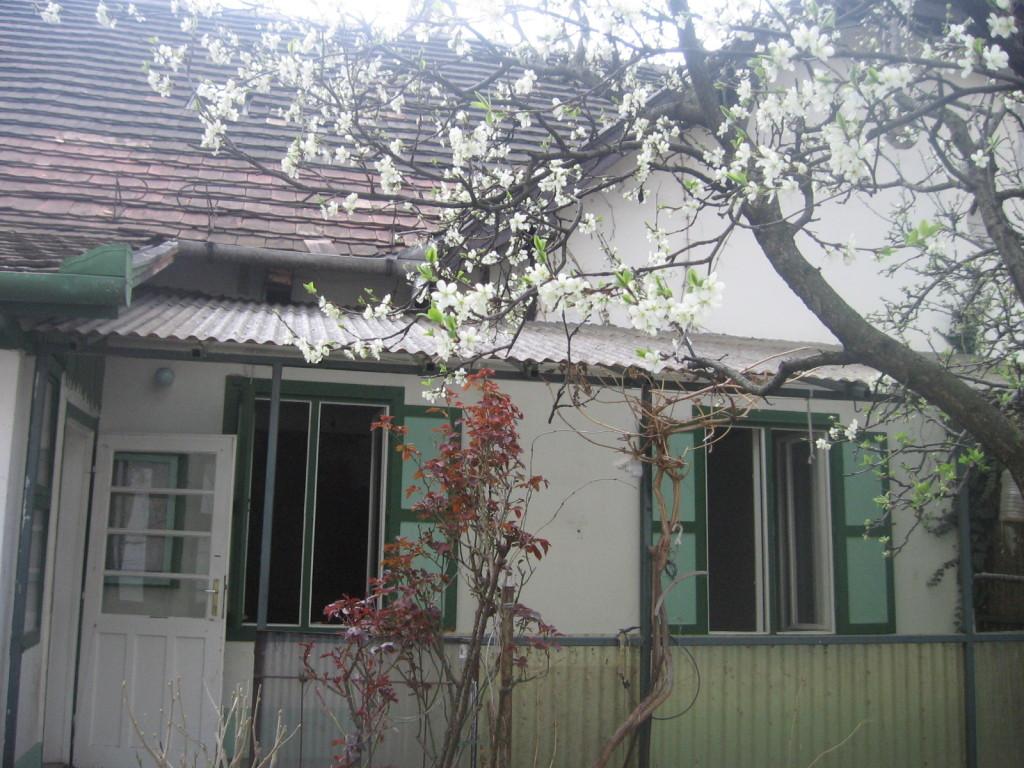 Kicsi Ház front