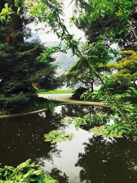 Comó-i tó csodálatos világa