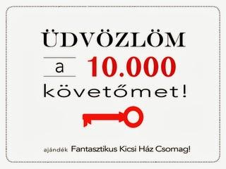 rsz_kicsihaz_10000.jpg