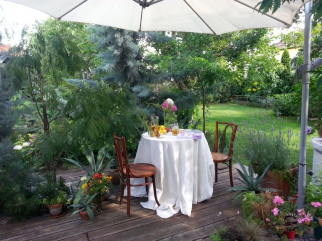 Varga Bianka romantikus kerti zuga