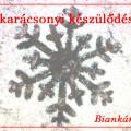 bianka_karacsony_nyito