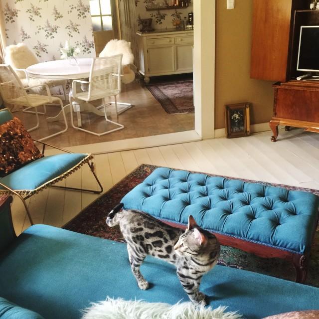A nappalink most / Kicsiház