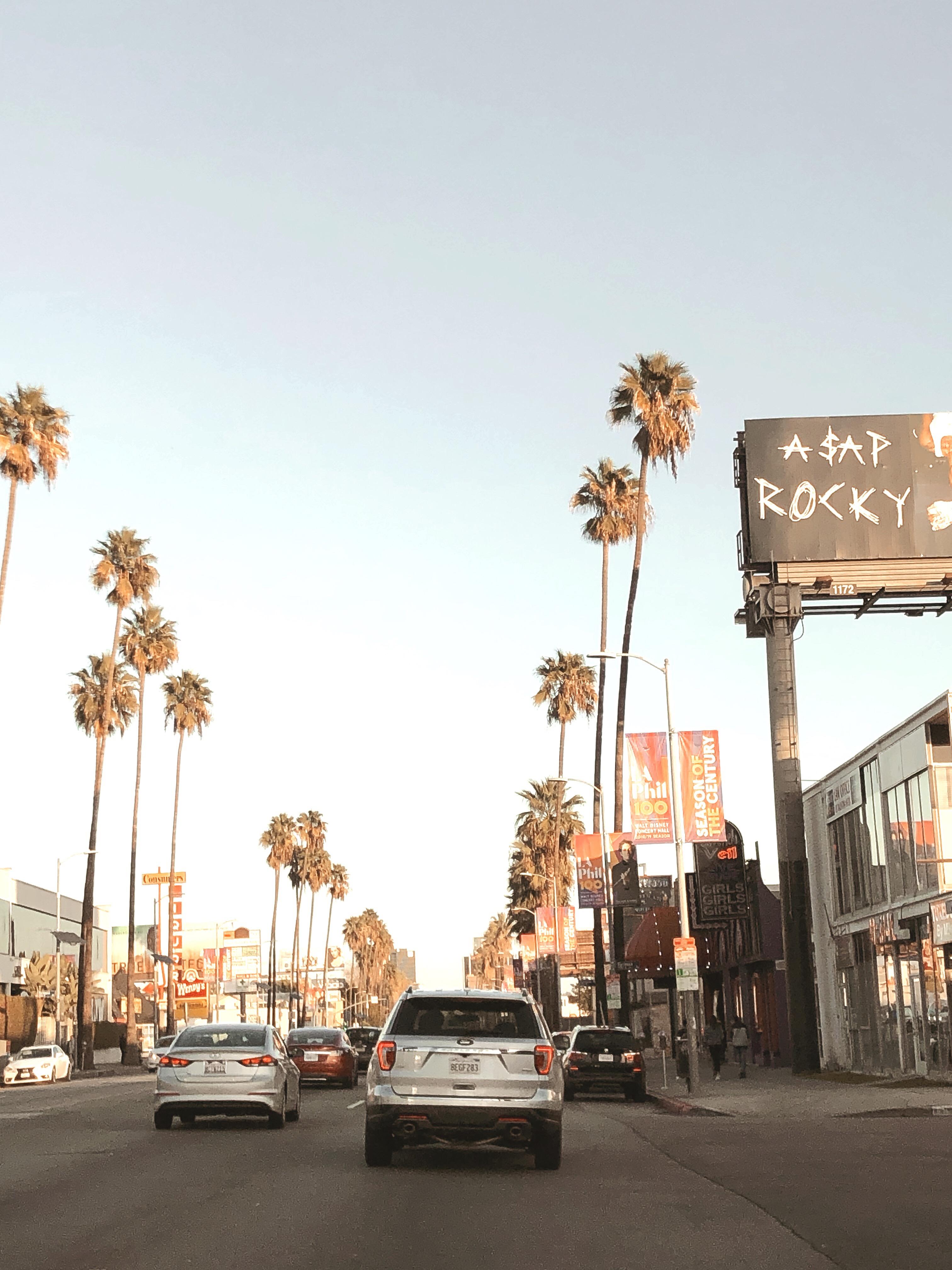 Sunset Boulevard naplementében